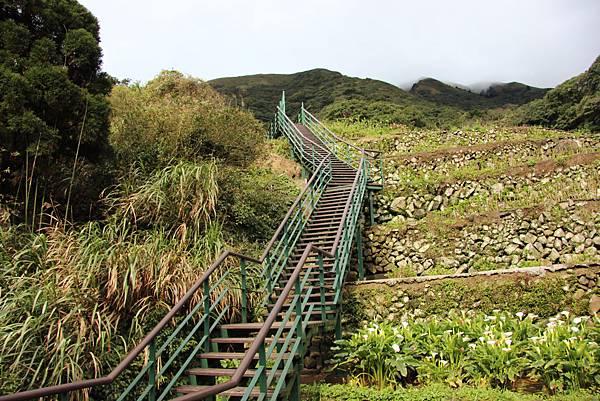 0308竹仔湖上中正山 (11).JPG