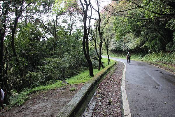 0308竹仔湖上中正山 (22).JPG