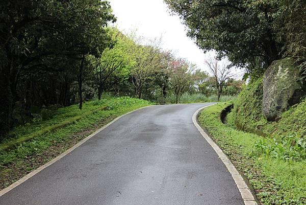 0308竹仔湖上中正山 (24).JPG