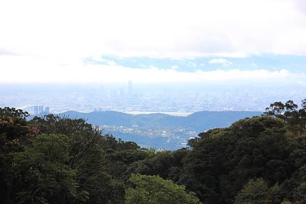 0308竹仔湖上中正山 (29).JPG