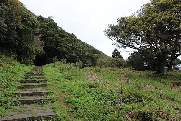 0308竹仔湖上中正山 (35).JPG