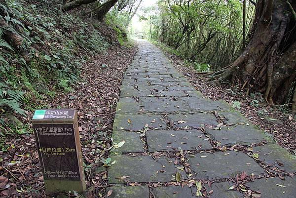 0308竹仔湖上中正山 (40).JPG