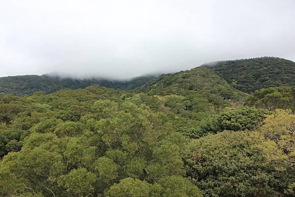 0308竹仔湖上中正山 (53).JPG