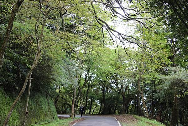 0308竹仔湖上中正山 (69).JPG