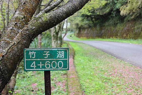 0308竹仔湖上中正山 (72).JPG