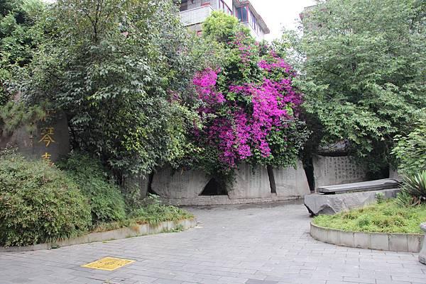 0517成都送仙橋琴臺路一帶街景 (17).JPG