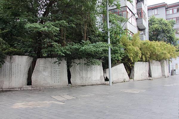 0517成都送仙橋琴臺路一帶街景 (18).JPG