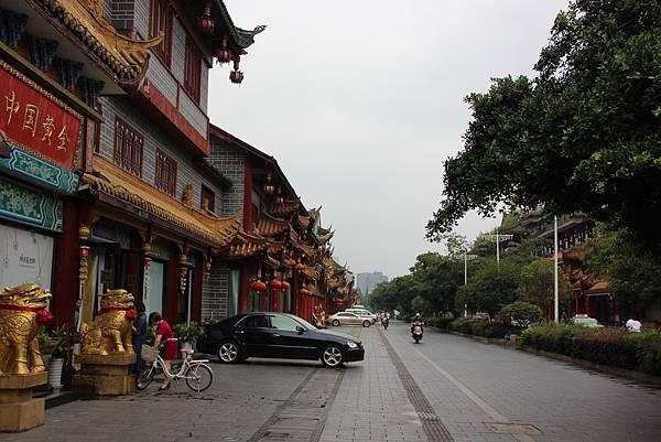 0517成都送仙橋琴臺路一帶街景 (28).JPG