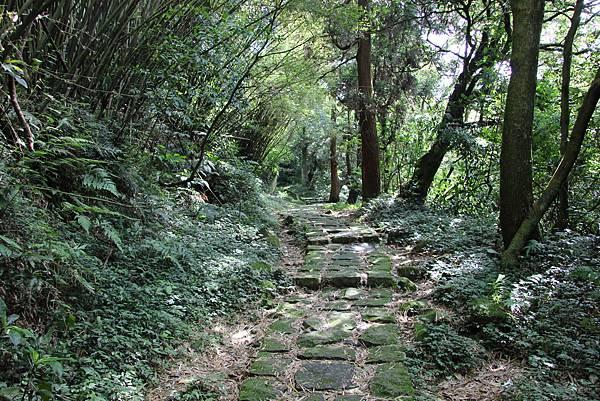 0530涓絲瀑布竹高山 (13).JPG