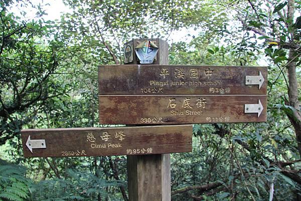 0627東勢格古道上臭頭山 (6).JPG