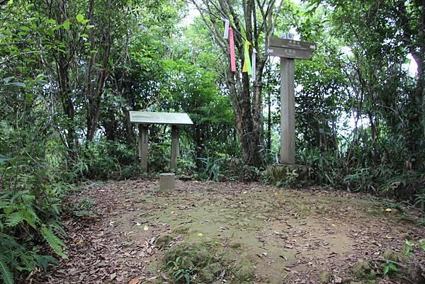 0627東勢格古道上臭頭山 (35).JPG