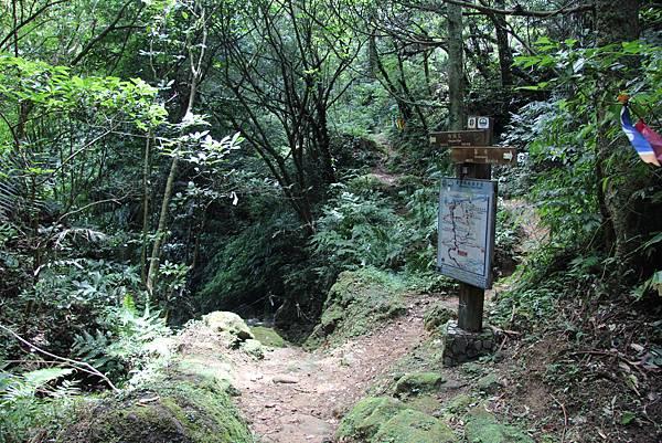 0627東勢格古道上臭頭山 (41).JPG