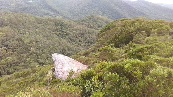 0815汐止金明山 (32).jpg