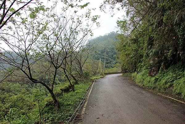 1025金瓜寮溪步道 (4).JPG