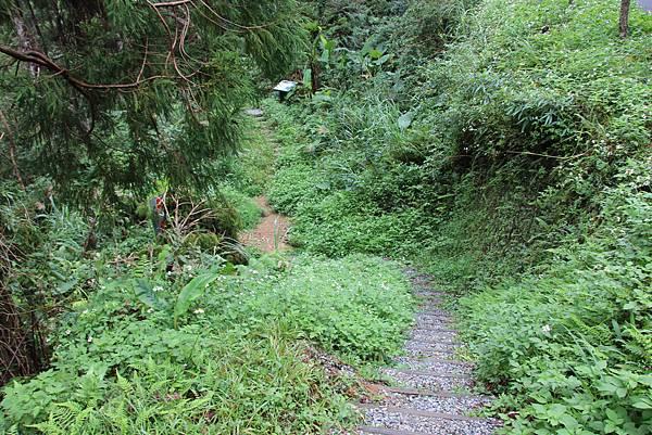 1025金瓜寮溪步道 (29).JPG