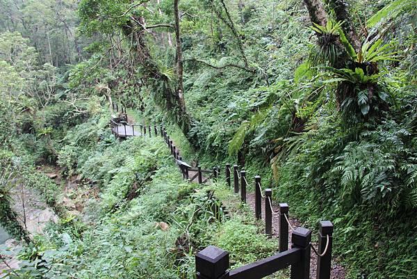 1025金瓜寮溪步道 (30).JPG