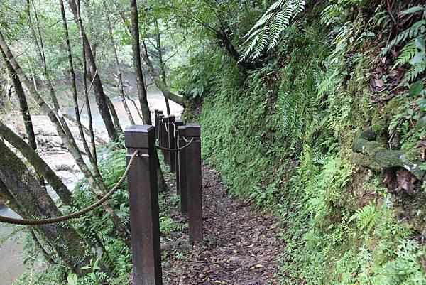 1025金瓜寮溪步道 (35).JPG