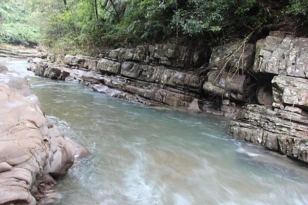 1025金瓜寮溪步道 (40).JPG
