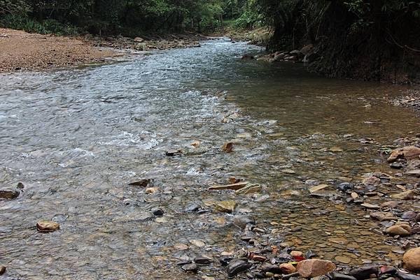 1025金瓜寮溪步道 (71).JPG