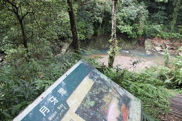 1025金瓜寮溪步道 (77).JPG