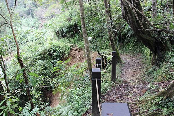 1025金瓜寮溪步道 (78).JPG