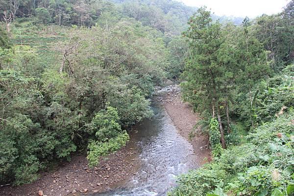 1025金瓜寮溪步道 (80).JPG