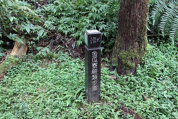 1025金瓜寮溪步道 (83).JPG