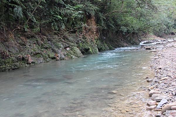 1025金瓜寮溪步道 (84).JPG