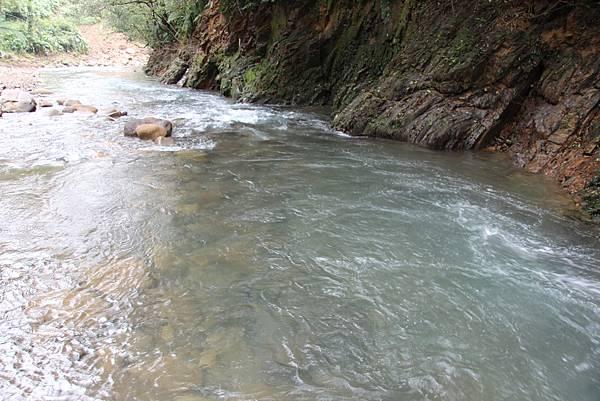 1025金瓜寮溪步道 (86).JPG