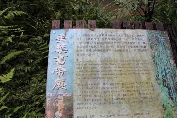 1025金瓜寮溪步道 (89).JPG