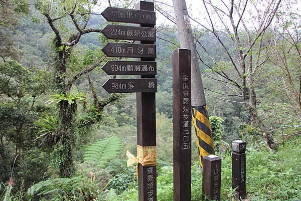 1025金瓜寮溪步道 (91).JPG