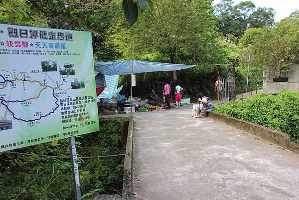 1031芎林飛鳳山、新埔文山國小百年香楓 (11).JPG