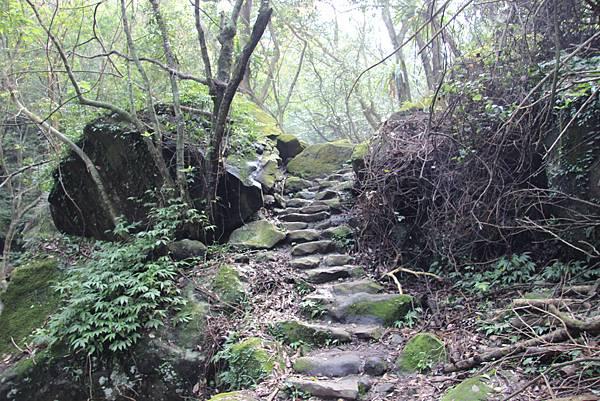 1107遊三芝青山瀑布尖山湖步道 (46).JPG