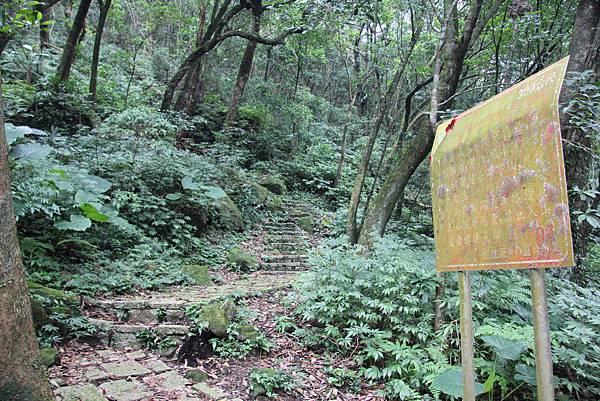1107遊三芝青山瀑布尖山湖步道 (80).JPG