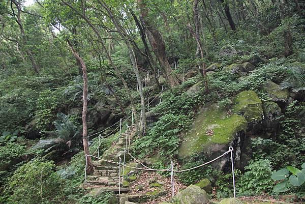 1107遊三芝青山瀑布尖山湖步道 (81).JPG