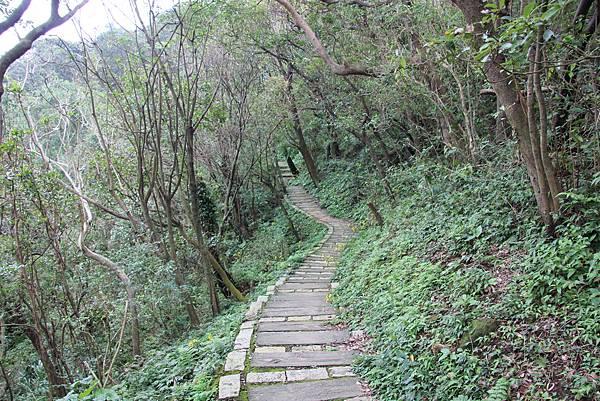 1107遊三芝青山瀑布尖山湖步道 (85).JPG