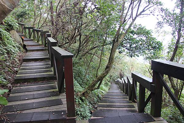 1107遊三芝青山瀑布尖山湖步道 (92).JPG