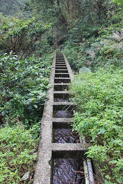1107遊三芝青山瀑布尖山湖步道 (93).JPG