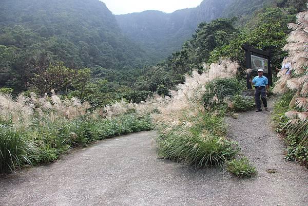 1107遊三芝青山瀑布尖山湖步道 (99).JPG