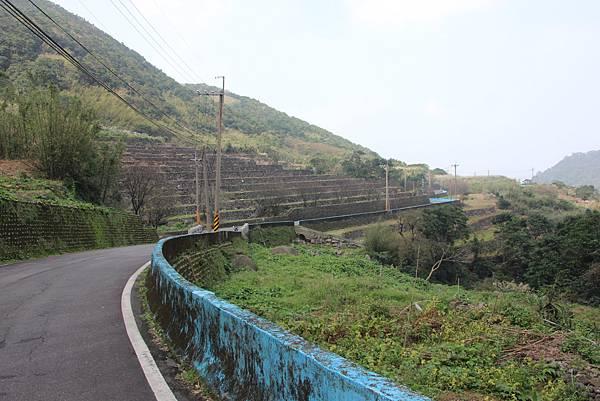 1107遊三芝青山瀑布尖山湖步道 (104).JPG