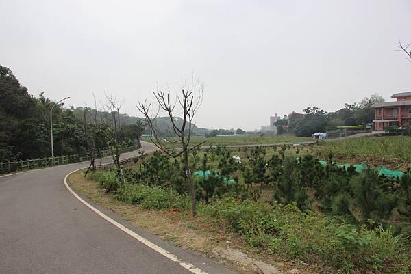 1107遊三芝青山瀑布尖山湖步道 (124).JPG