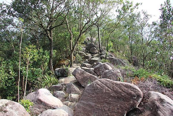 1114剪刀石山 (29).JPG