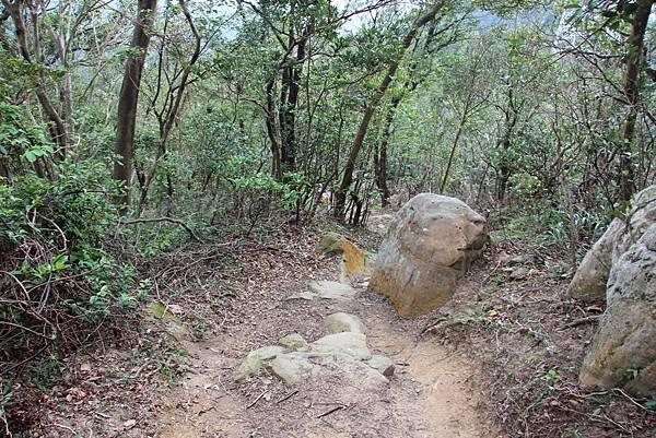 1114剪刀石山 (70).JPG
