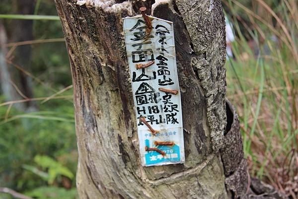 1114剪刀石山 (75).JPG