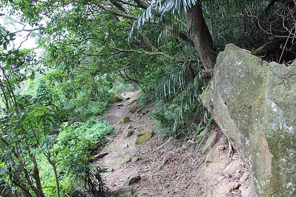1114剪刀石山 (79).JPG