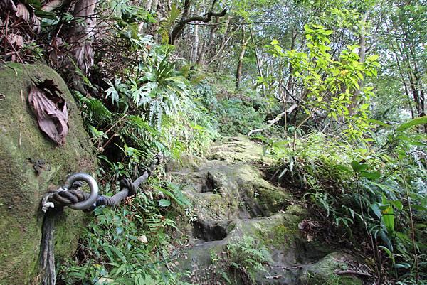 1128石碇皇帝殿 (17).JPG