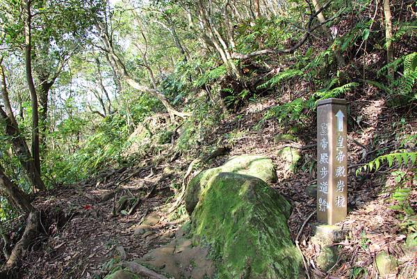 1128石碇皇帝殿 (18).JPG