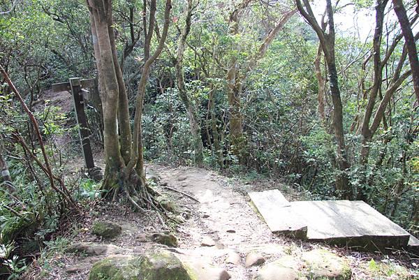 1128石碇皇帝殿 (62).JPG
