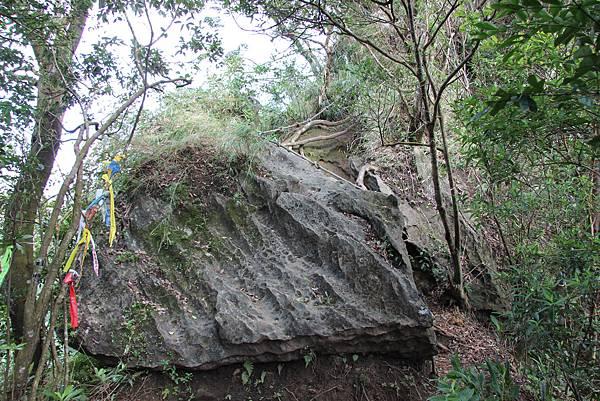1128石碇皇帝殿 (76).JPG