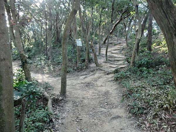 1219楊梅福人步道 (6).JPG
